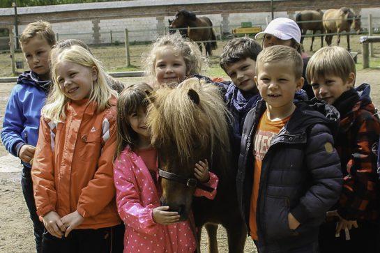 Accueil groupe enfants Equitation