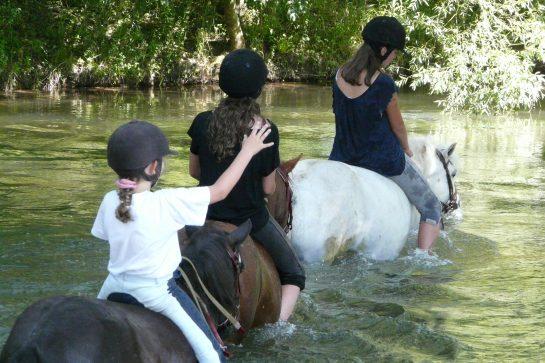 Stage d'Equitation en pleine Nature