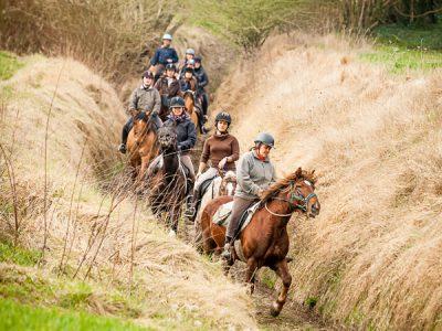 Balade à cheval en Forêt