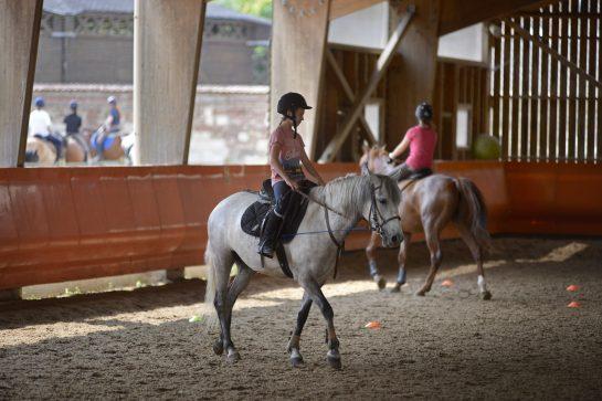 Plaisir de l'Equitation, Somme