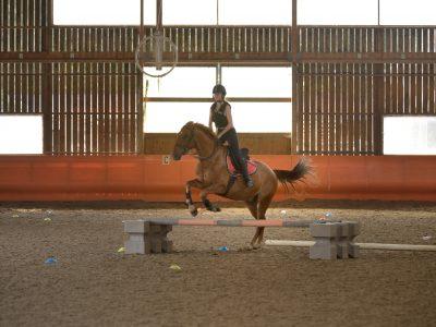 Cours de saut d'obstacle LieuDieu
