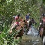 Activité poney nature