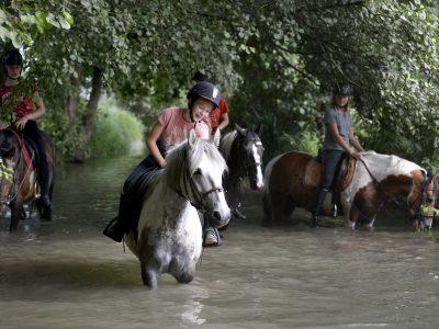 Balade en poney dans l'eau