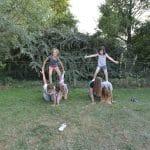 stage cirque et cheval en Picardie
