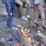 Soirées en nature autour d'un bon feu